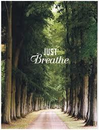 breathe trees